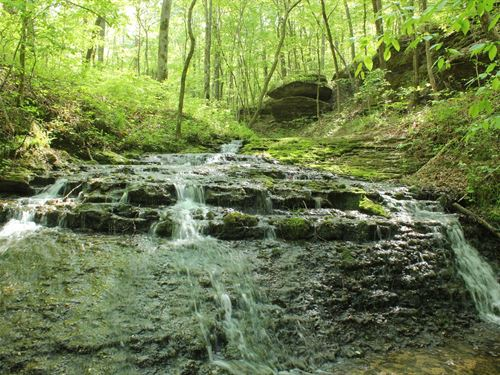 Home Hunting Recreational Land Pool : Hohenwald : Lewis County : Tennessee