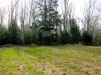 68 Acres Land, Quaint Cabin : Benton : Columbia County : Pennsylvania