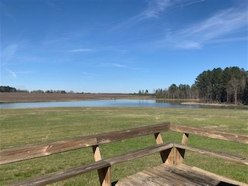 Martin Farm Property : Eastman : Dodge County : Georgia