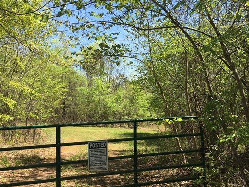 Parcel A Hwy 96 Hunting : Irwinton : Wilkinson County : Georgia