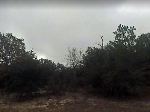 Jackson County, Fl $105,000 : Alford : Jackson County : Florida