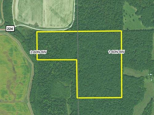 80.6 Acres Lewis County : Lewistown : Lewis County : Missouri