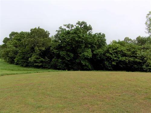 Land in The Ozarks of Arkansas : Maynard : Randolph County : Arkansas