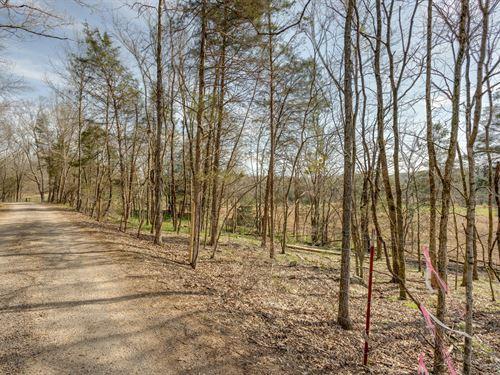 Stream, Pasture & Wildlife Acreage : Culleoka : Maury County : Tennessee