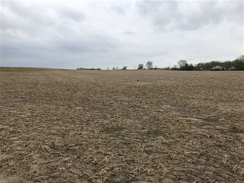 Land For Sale, Madison County : Lapel : Madison County : Indiana