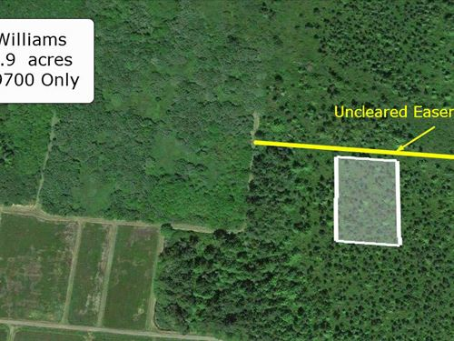 1.9 Acre Double Almost Cleared Lot : Ilwaco : Pacific County : Washington