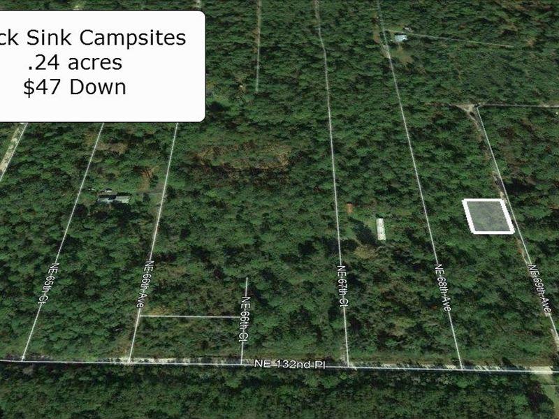 .24 Acres Minutes To Grooski Prairi : Citra : Marion County : Florida