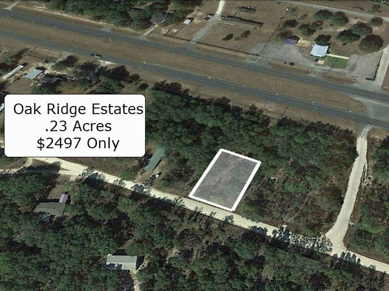 .23 Acre Mobile Friendly Lot : Bronson : Levy County : Florida