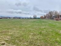 Horse Meadows : Gunnison : Gunnison County : Colorado