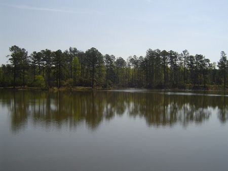 6 Acre Lake : Jeffersonville : Twiggs County : Georgia