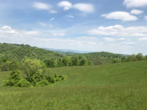 266.34+/- Acres Waterfront : Tazewell : Claiborne County : Tennessee