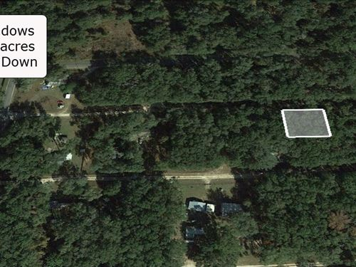 .20 Acre Pristine Lot At Meadow : Citra : Marion County : Florida