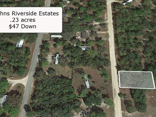 .23 Acre Lot For Spacious Living : Satsuma : Putnam County : Florida