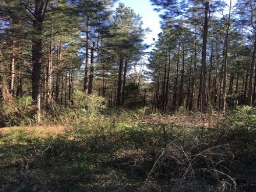 119 Acres In Holmes County In West : West : Holmes County : Mississippi