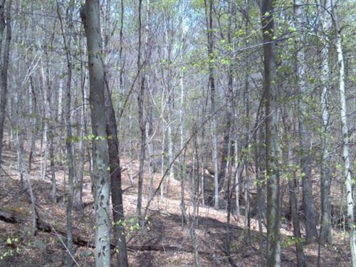 Virginia Farm & Land For Sale : Danville : Virginia