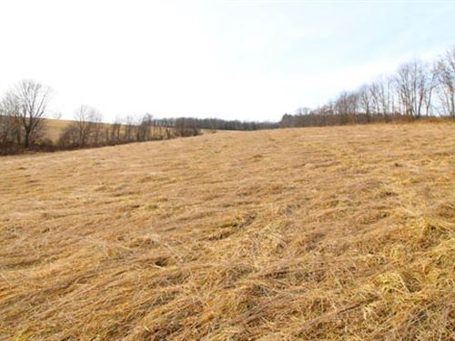 22 Acres Land : Unityville : Lycoming County : Pennsylvania