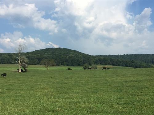 Beautiful Farm With Excellent Views : Sparta : White County : Tennessee