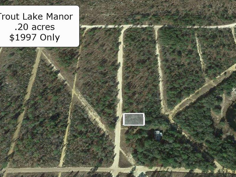 .20 Acre Lot For Invest Or Build : Interlachen : Putnam County : Florida
