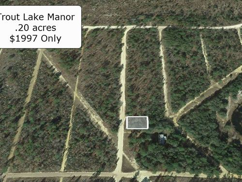 .20 Acre Lot For Invest Or Build : Interlachen : Putnam County : Florida