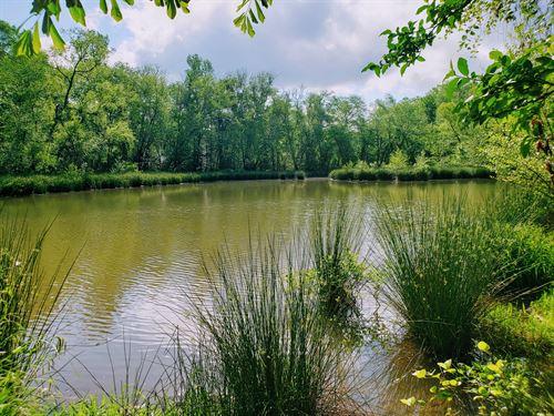 Saluda River Retreat : Hodges : Greenwood County : South Carolina
