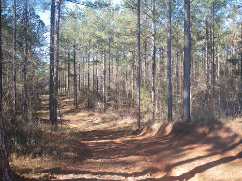 Lapine Tract : Lapine : Montgomery County : Alabama