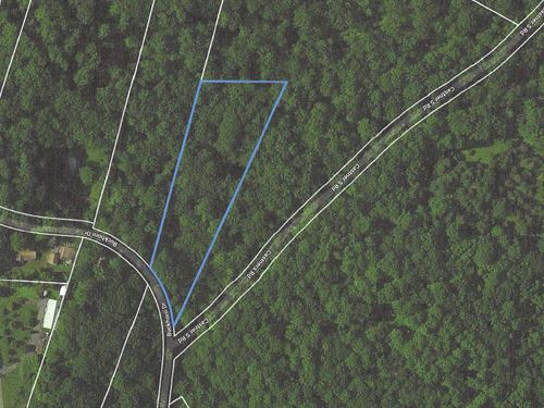 2.94+/- Acre Wooded Lot : Belvidere : Warren County : New Jersey