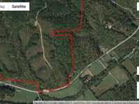 235 Acres in Dover, Stewart County : Dover : Stewart County : Tennessee