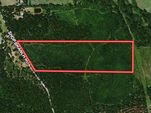 Affordable Land un Huntington : Huntington : Angelina County : Texas