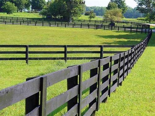 South Central Kentucky Equine Farm : Smiths Grove : Warren County : Kentucky