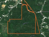 Hunting, Timber Land in Alcorn Cou : Glen : Alcorn County : Mississippi