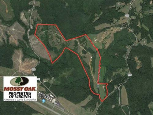 185 Acres Recreational Hunting And : Martinsville : Henry County : Virginia