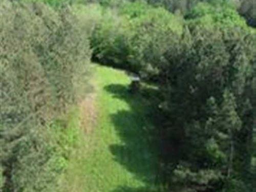 585 Acres In Itawamba County : Nettleton : Itawamba County : Mississippi