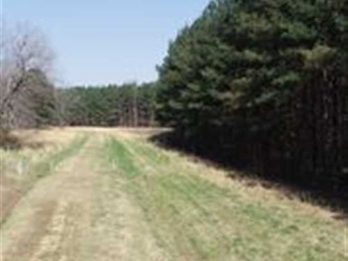 38 Acres Evans Dr Tremont MS : Tremont : Itawamba County : Mississippi
