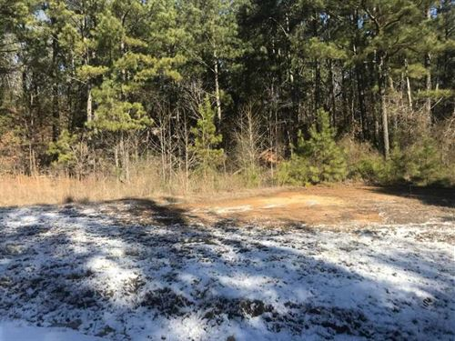 605 East Cox Rd Byhalia 12 Acres : Byhalia : Marshall County : Mississippi