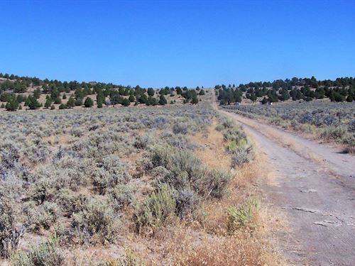 Fantastic Parcel At $299 A Month : Termo : Lassen County : California
