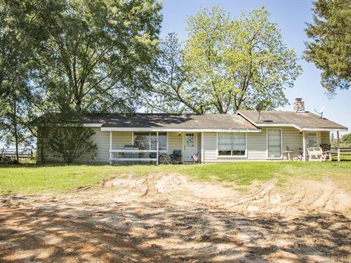 15 Acres Dickens Casita : Livingston : Polk County : Texas