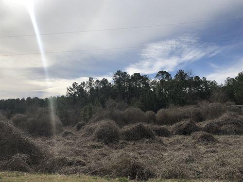 2.4 Acres Bartow County, Corner Lot : Taylorsville : Bartow County : Georgia