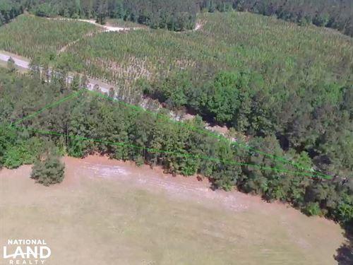 Caw Caw Highway Homesite : Saint Matthews : Calhoun County : South Carolina