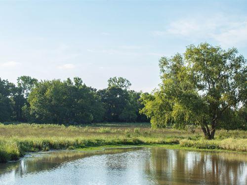 Beautiful Homestead Property : Huntington : Angelina County : Texas