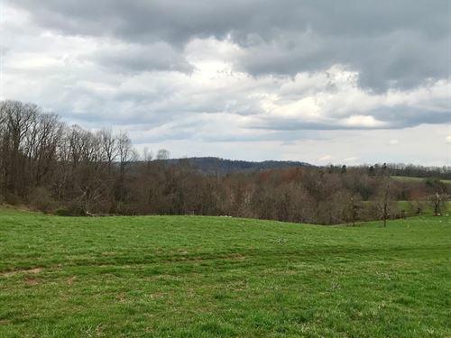 Gorgeous Land Property Floyd VA : Floyd : Virginia