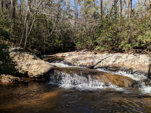 120+/- Acres Timberland On Metcalf : Ashland : Clay County : Alabama