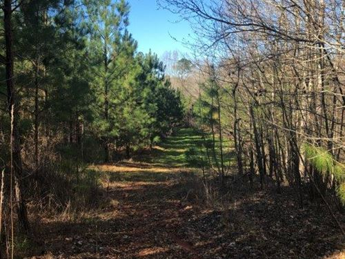 Beaverdam Creek At Lick Skillet : Greensboro : Greene County : Georgia