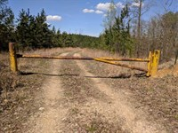 290 Acres in Dover, Stewart County : Dover : Stewart County : Tennessee