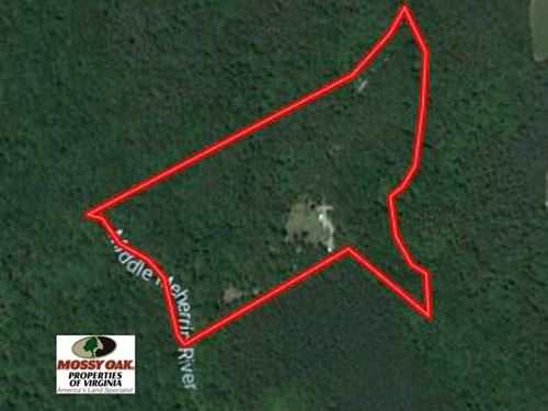 Reduced, 25 Acres of Hunting And : Drakes Branch : Lunenburg County : Virginia