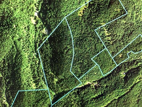 128.46 Acres, Calhoun County, Home : Orma : Calhoun County : West Virginia