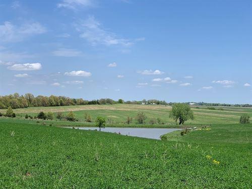 40 Acre Farm Southern Iowa Ringgold : Redding : Ringgold County : Iowa