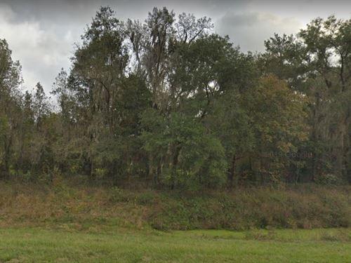 Marion County, Fl $115,000 : Reddick : Marion County : Florida