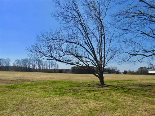 Farm For Sale In Beaufort County NC : Chocowinity : Beaufort County : North Carolina