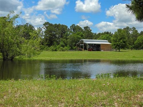 Charming Property With Country Home : Huntsville : Walker County : Texas