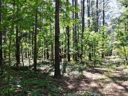 Jukes Hunting Retreat : Midville : Emanuel County : Georgia